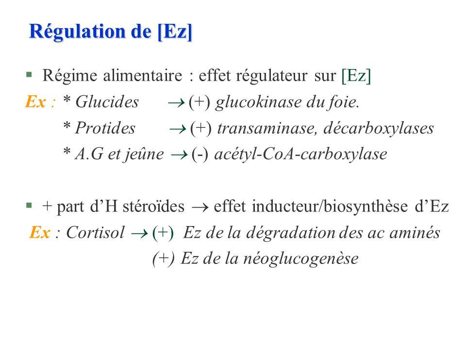 Régulation de [Ez] Régime alimentaire : effet régulateur sur [Ez]